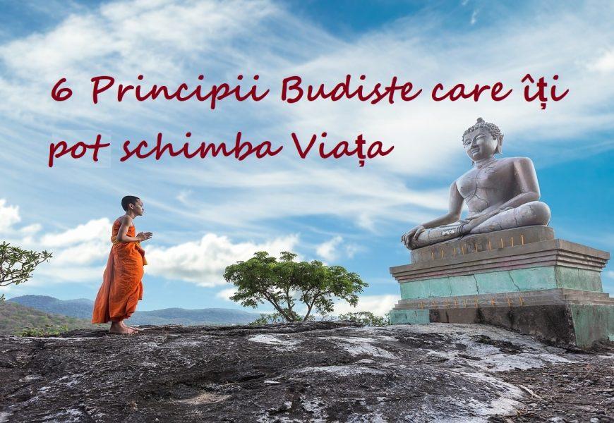 6 Principii Budiste care îți pot schimba Viața