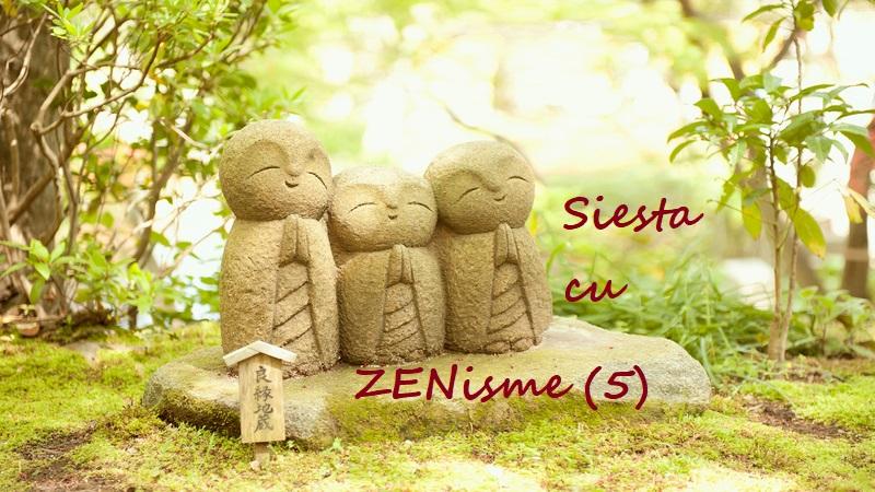 Siesta cu ZENisme (5)