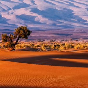 Camping Activities in Morocco Deserts